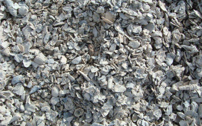 Florida shell for sale north fort myers for Landscaping rocks fort myers fl