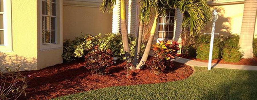 Red landscape mulch for sale north fort myers for Landscaping rocks fort myers fl