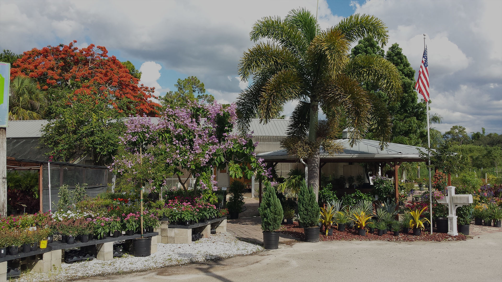 Garden center north fort myers for Myers lawn and garden